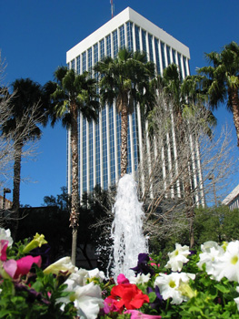 Flowers in front of a fountain in front of palm trees in front of a building in downton Tucson, Arizona.